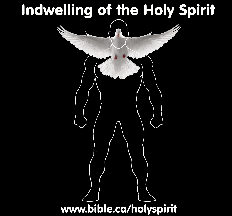 http://www.bible.ca/holyspirit/Holy-Spirit-Indwelling-metaphoric-temple-church-christian-body.jpg