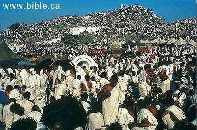 islam-standing-mount-arafat.jpg
