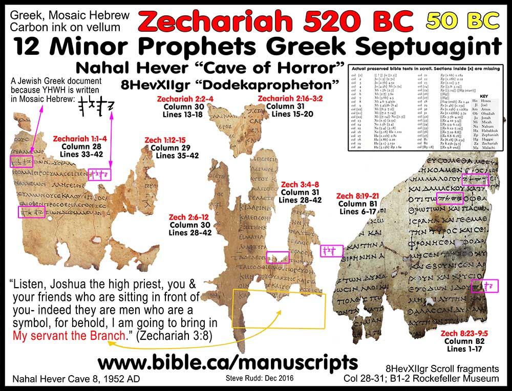 Old Testament Prophet  Letters Long