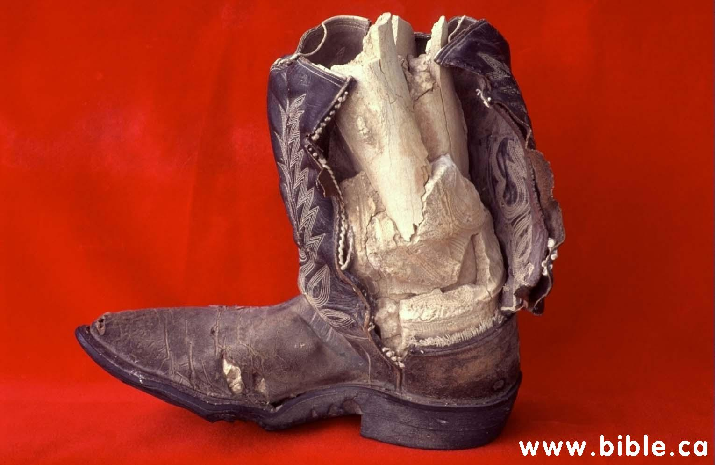 http://www.bible.ca/tracks/limestone-cowboy-boot-inside.jpg