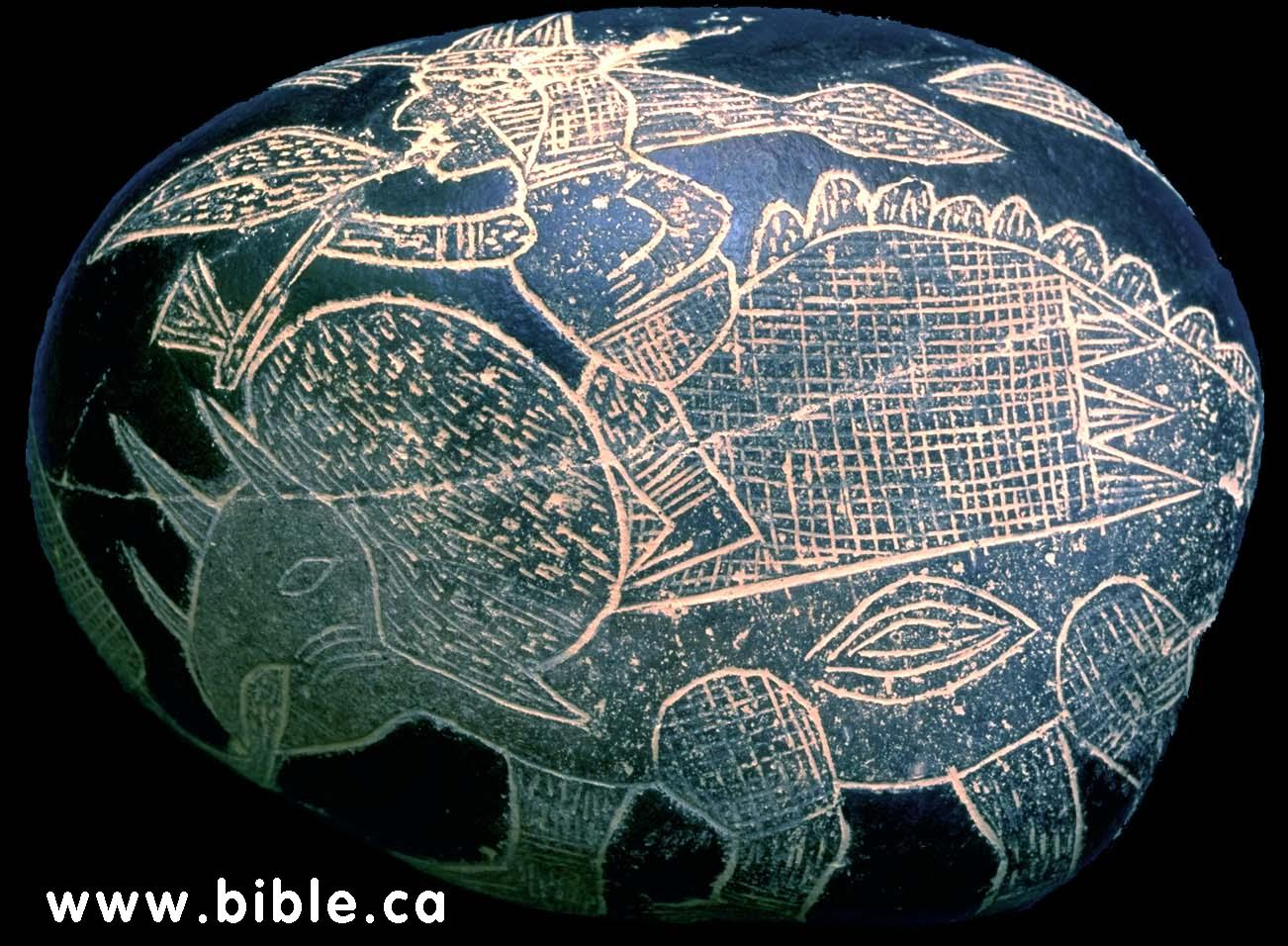 http://www.bible.ca/tracks/peru-tomb-rock-art-man-riding-triceratops.jpg